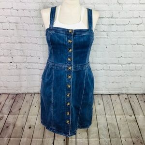 EXPRESS: Overall Dress